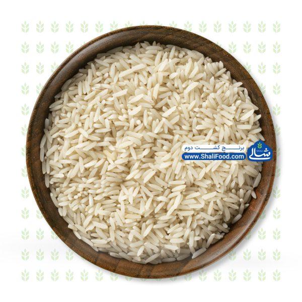 برنج کشت دوم شالی